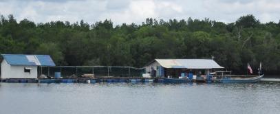 Fishermen live afloat on the Santi River
